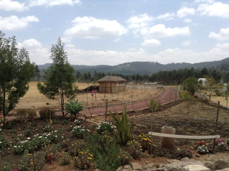 The dirt track in Sululta