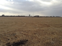 The satellite field