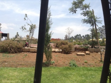 Brown scrub marks new gardens