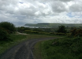Landscape shot; road curving through greenery, as a bay opens up on the other side