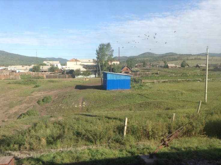 A few houses and a blue shed seen from the train