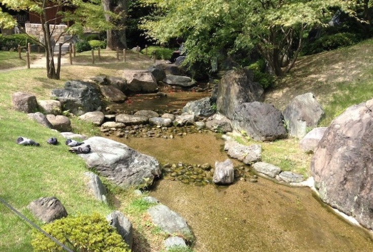 Stream running through rocks and green grass, narrow trees in a garden
