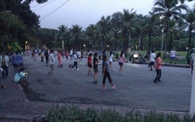 People exercising in rows, in a park with palm trees