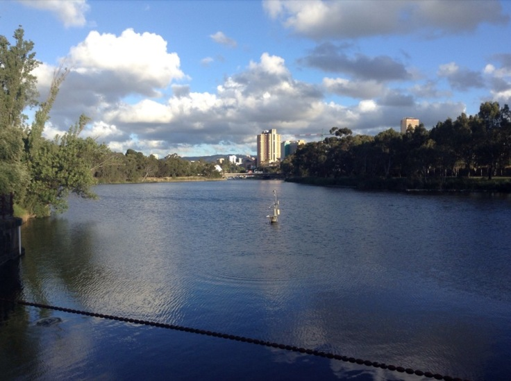 Torrens River, from the walk to the venue