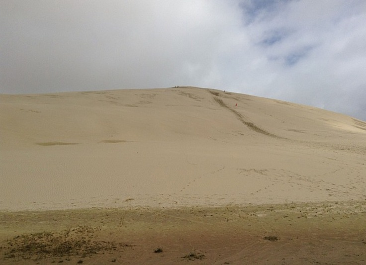 View of the dunes, people on top are just specks