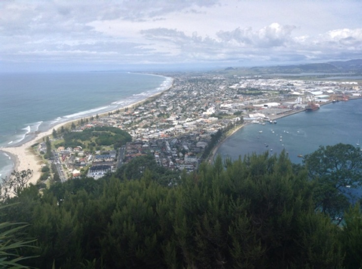 View from the top, back over Manganui, a spit of land with water on either side