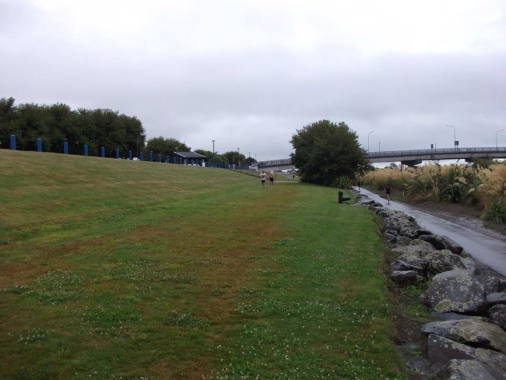 Runners finish on a grassy bank, with rocks and a walkway alongside