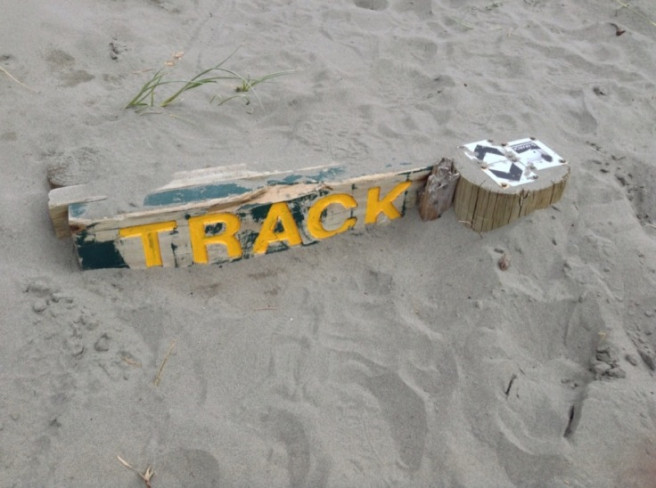 "Wooden sign, nearly submerged by sand, says ""Track"""