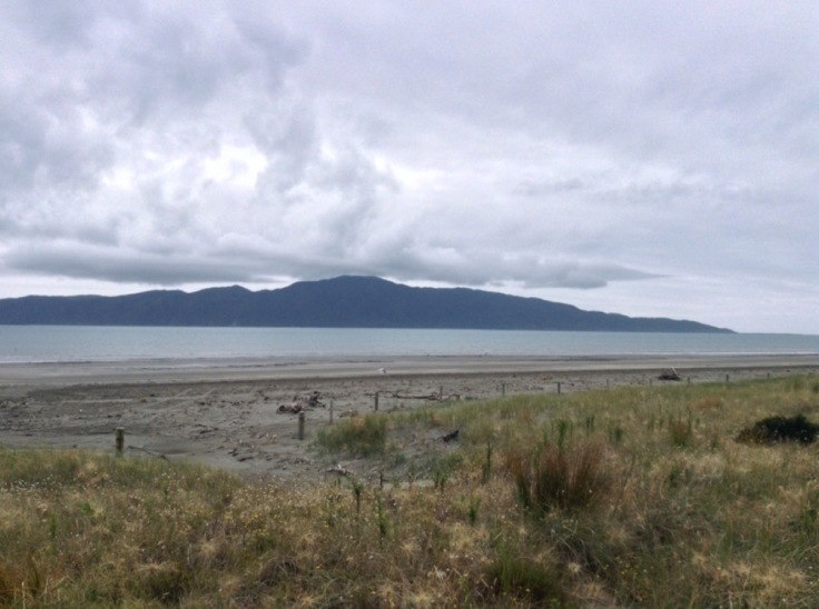 View of Kapiti Island, a dark mass out to sea, seen from the mainland