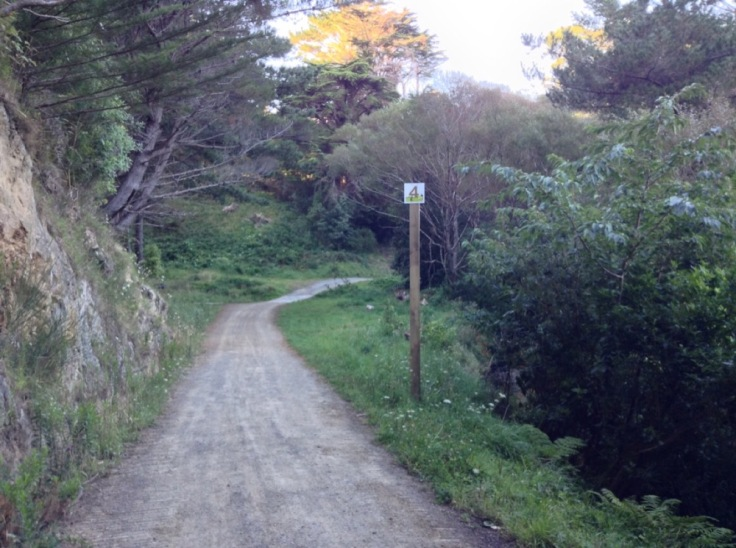 Looking down the path, with the 4km sign positioned on a high pole