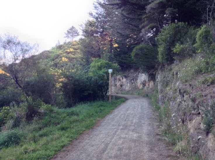 Gravel path heading uphill, with a stony bank on one side, grass the other