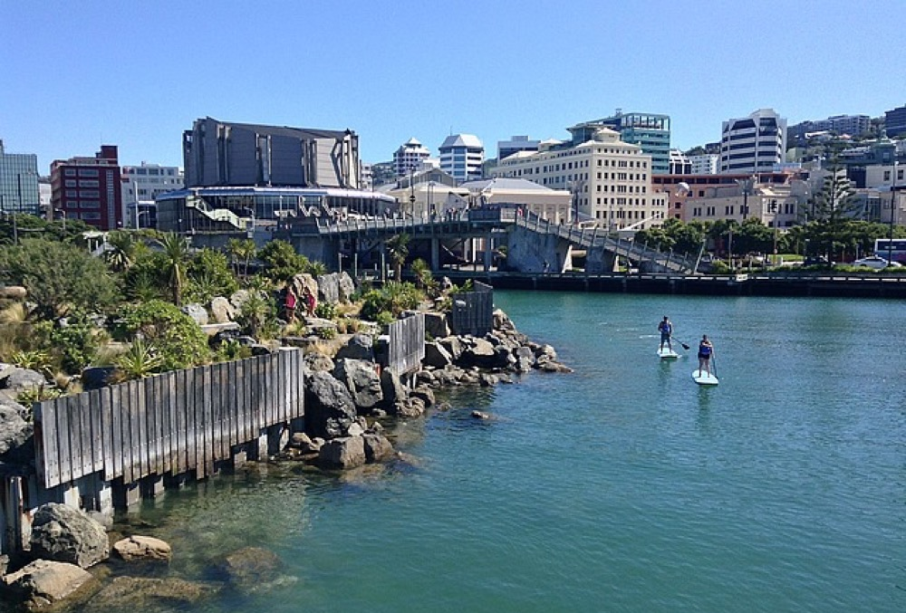 Two paddle boarders on the water, near the City to Sea bridge, with Wellington's buildings of many heights behind