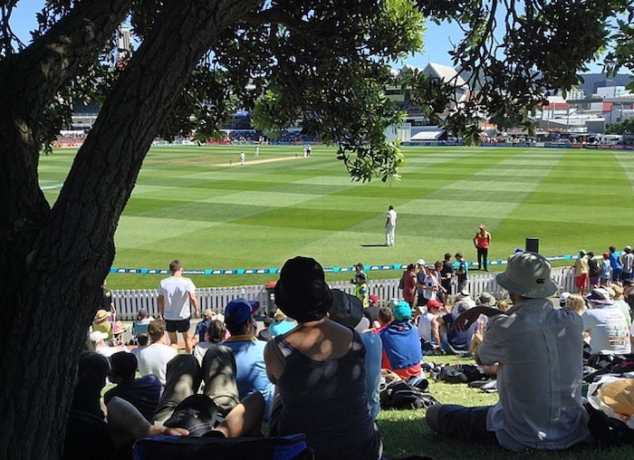 A tree obscures part of the pitch at the cricket (for the photo only - sitting underneath it, I could see just fine)