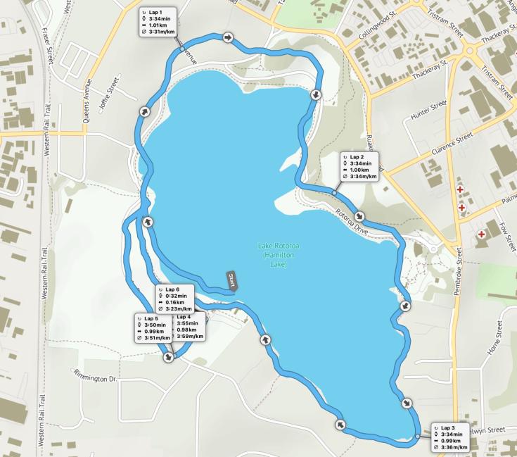 Hamilton Lake parkrun route