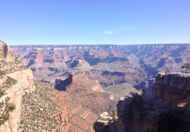 The canyon, from the rim