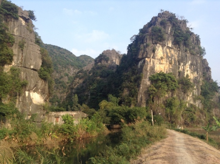 Tall limestone cliffs poke out of the rice fields
