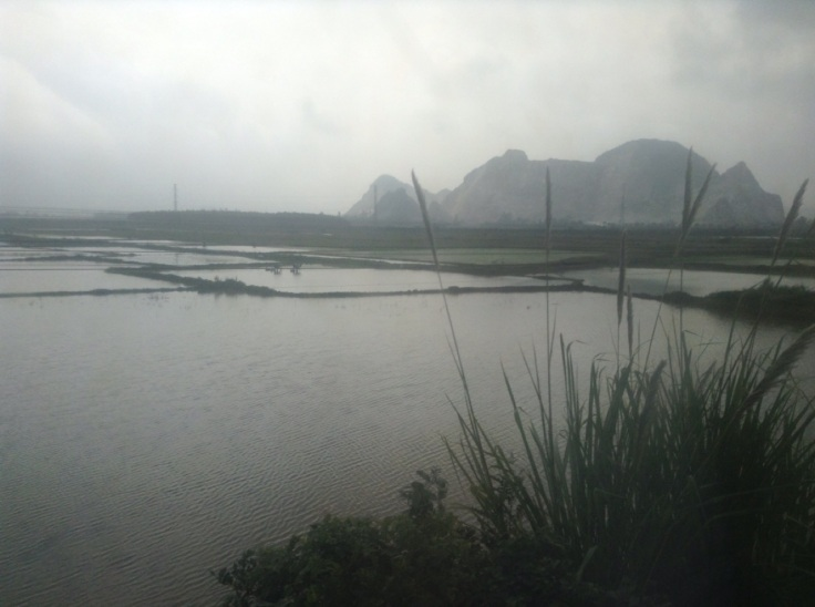 Wide open paddy fields in the foreground, with a hill sticking up behind