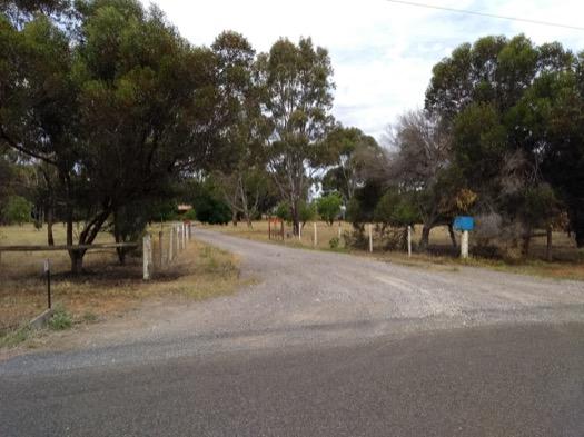 Tinsel on gates
