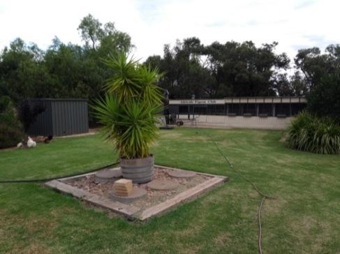 Garden and pigeon loft.