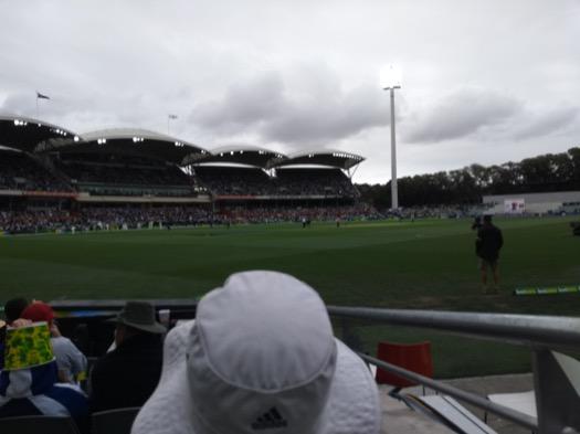 A man in a hat ahead of me, a low view of the pitch ahead of him