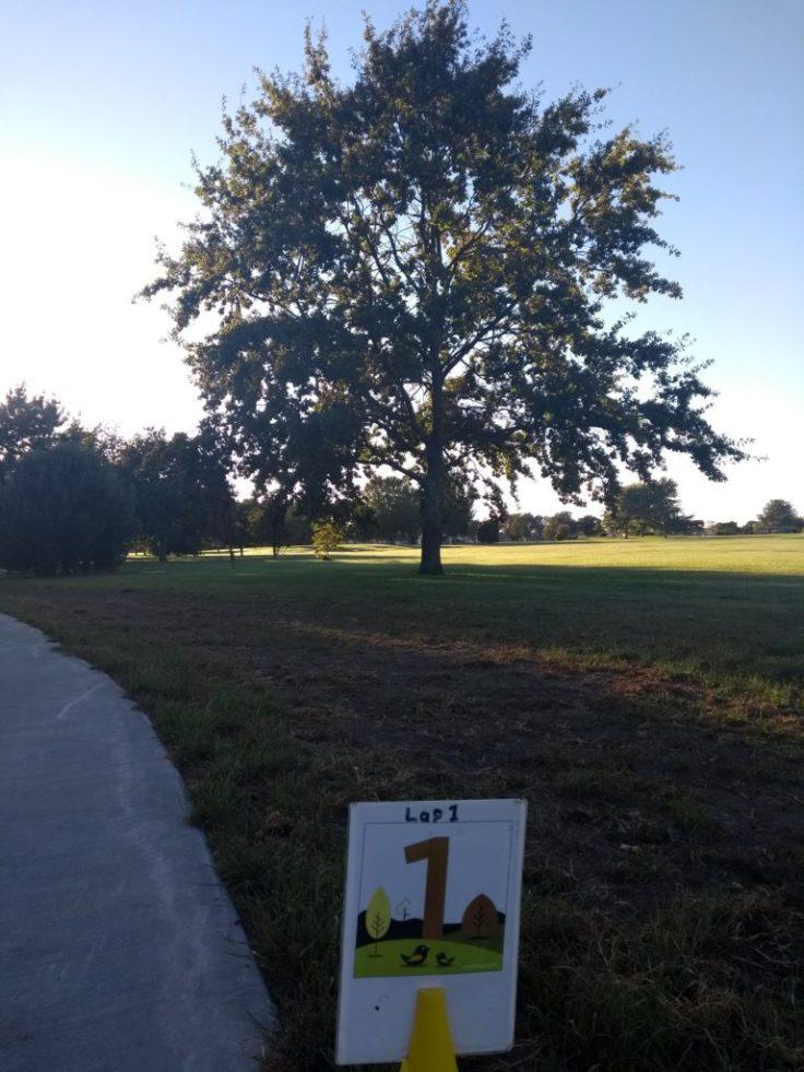 Anderson park, Napier, 1km marker.