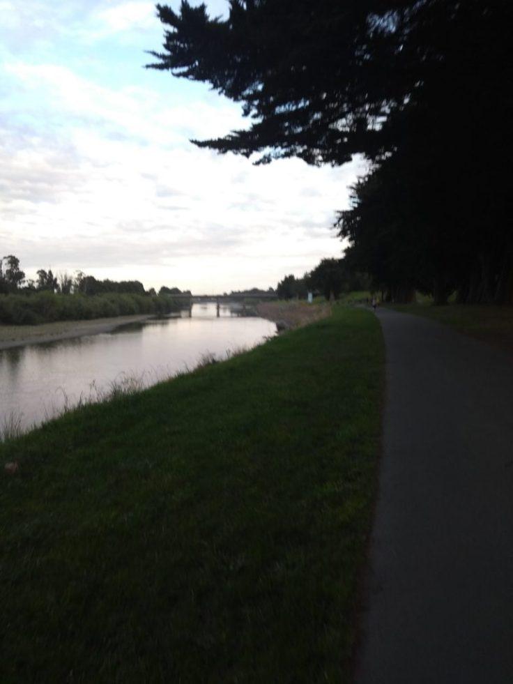 Other side of the bridge, Manawatu river.