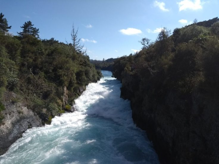 Huka Falls running through tree-lined banks