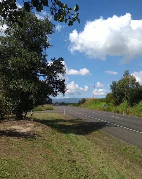 Roadside lay-by, blue skies and fresh mown grass