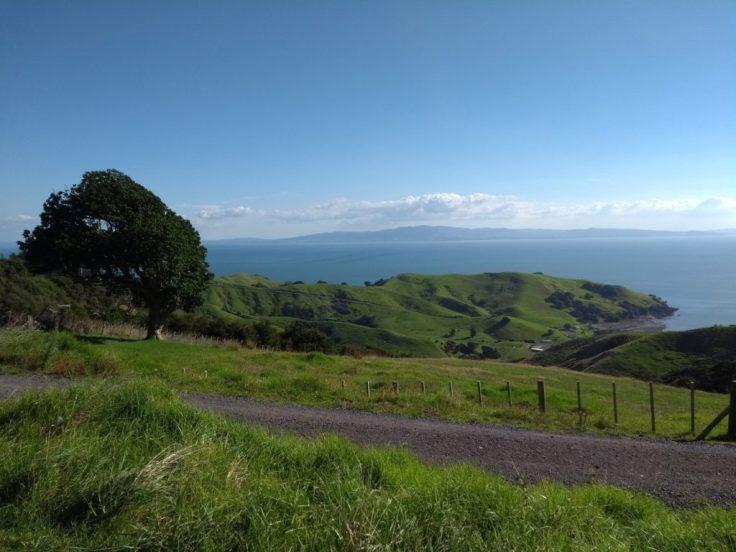 Coromandel peninsula.