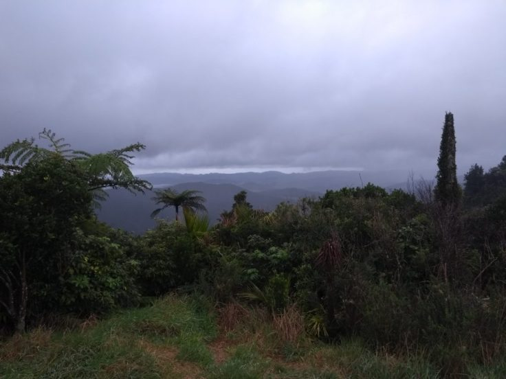 Kaipawa trig track viewpoint