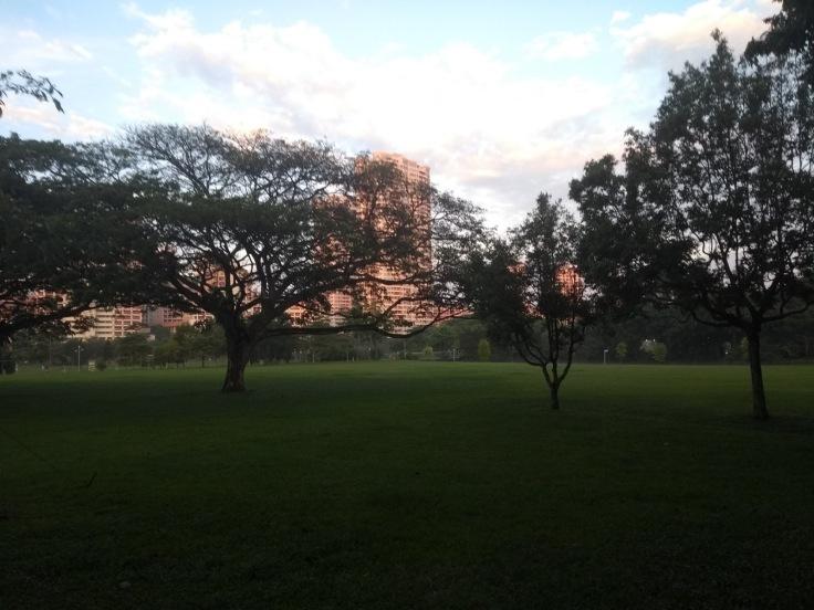 Bishan-Ang Mo Kio park.
