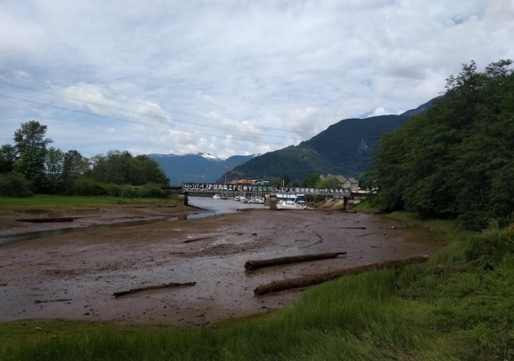 Mud flats in the river bank, Squamish