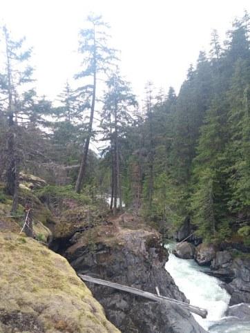 Falls, water, greenery.