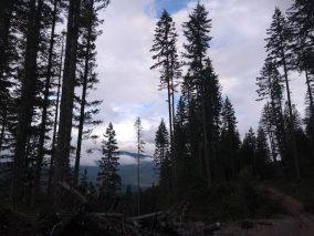 Trails around Whistler RV park