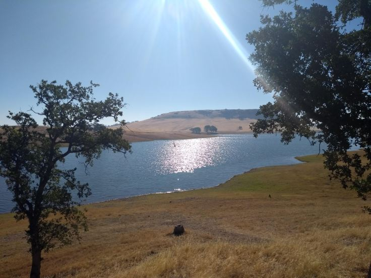 Black Butte lake by morning.