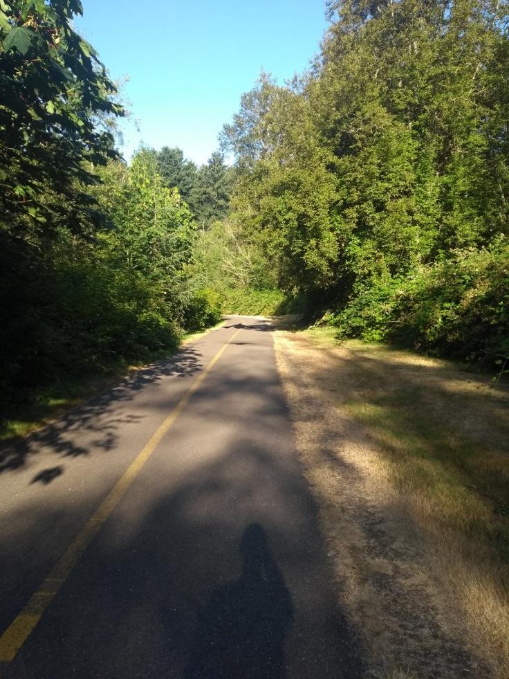 Des Moines Creek trail.