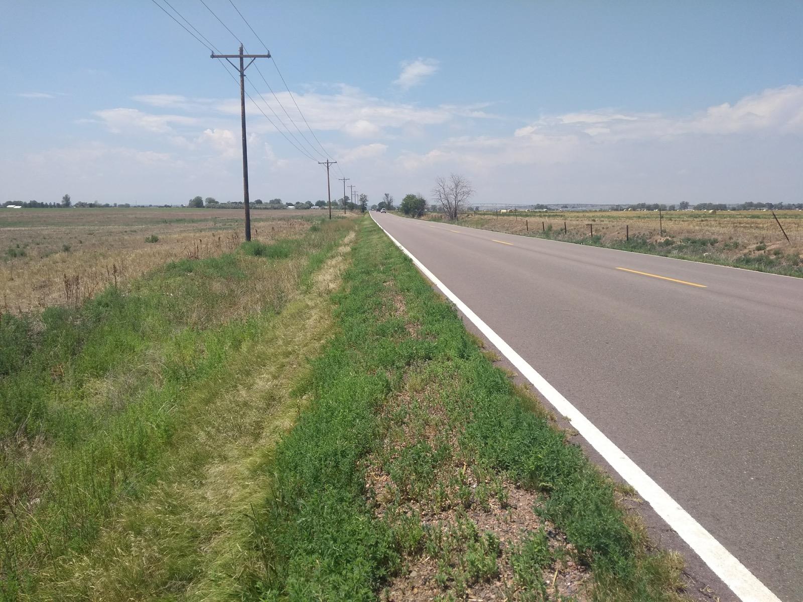 Long flat road, small verge