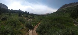 Panorama of trail, undergrowth and mountains