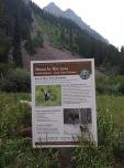 Moose behaviour warning