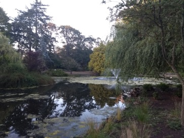 Fountains, Beacon Hill park