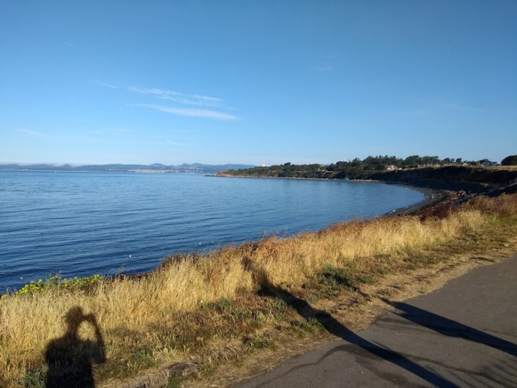 View from the start line, Clover Point parkrun
