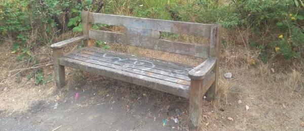 Bench, Bellingham