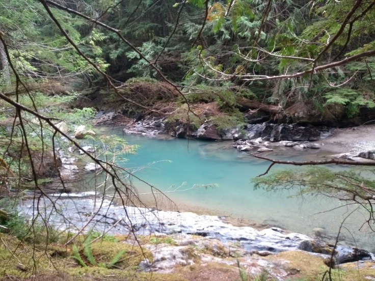 Green river above Nooksack falls