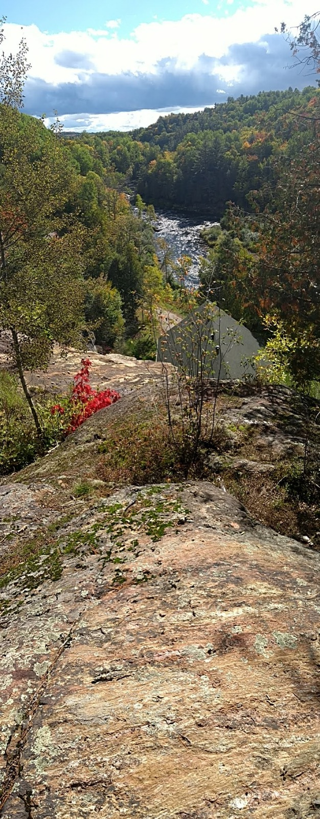 Portrait panorama - red leaves, rock and water