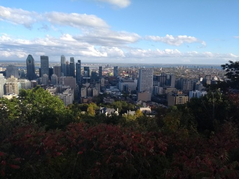 View from Mt Royal Chalet