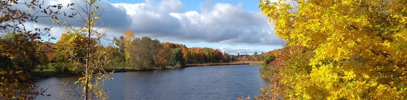 Beaver Pond, Kanata, ON