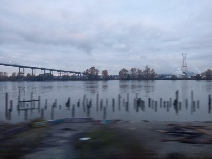 Watery view from the train
