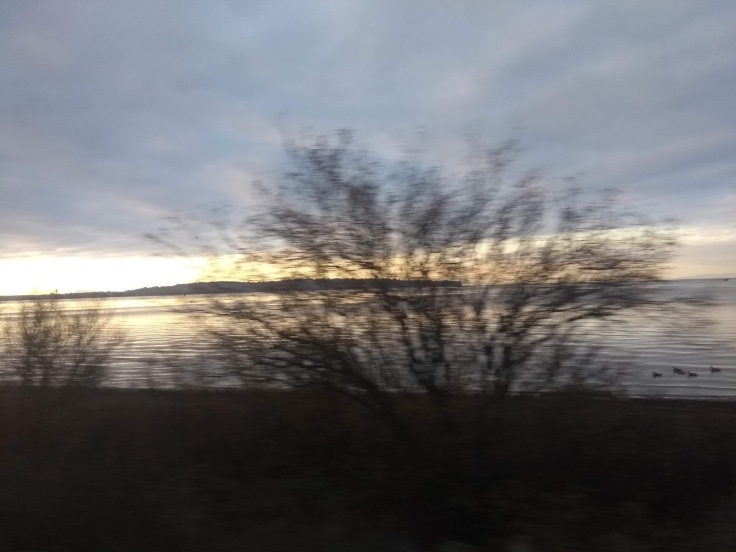 Blurry view of the water