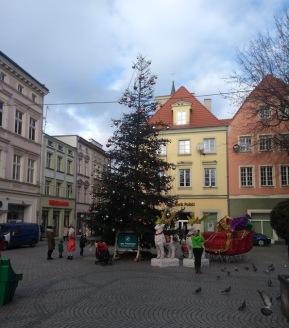 Christmas tree, Zielona Gora