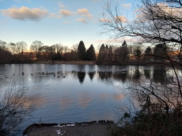 The lake, Gnoll country park